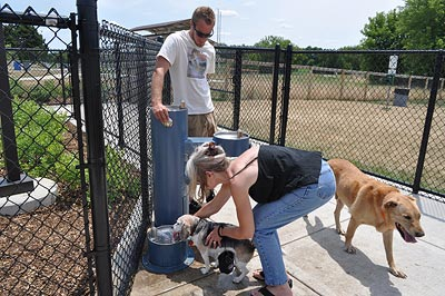 Cary Park District Dog Park